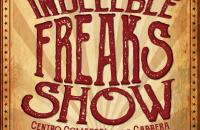 CARTEL INDELEBLE FREAKS SHOW meiling